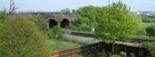 Irrigation Bridge